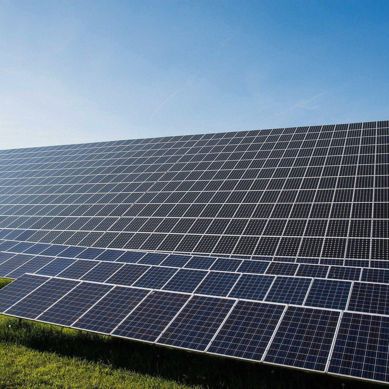 farma paneli słonecznych